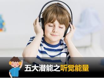 title='<p> <strong>天赋云报告解读-五大潜能量之听觉能量</strong> </p>'